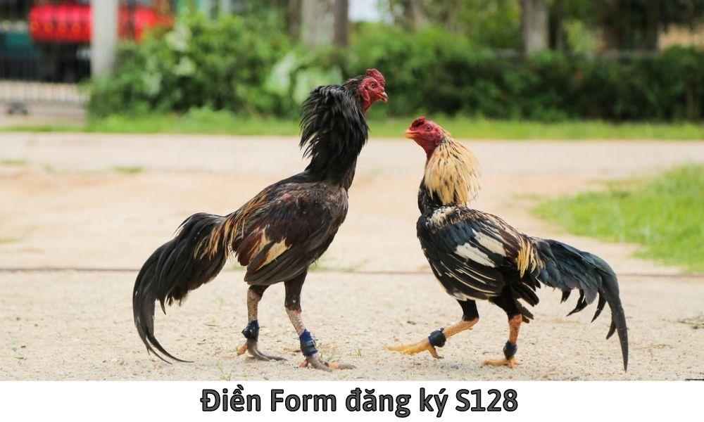 Điền Form đăng ký S128