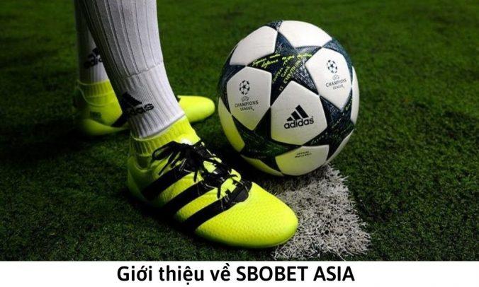 Giới thiệu về SBOBET ASIA